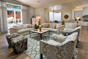 living-room-interior-design-bay-area-09