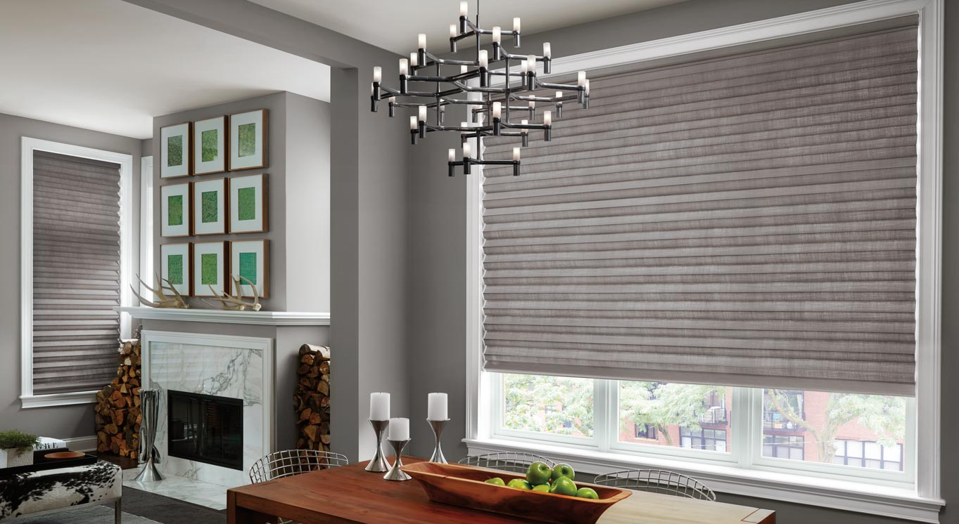 Dining Room Soft Solera Shades