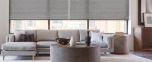 living-room-bay-area-interior-designer