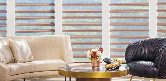 Buy Hunter Douglas Pirouette® Window Shades in Walnut Creek