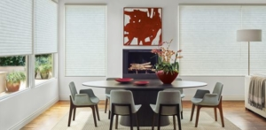 buy-hunter-douglas-sonnette-cellular-roller-shades-walnut-creak