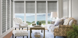 buy-hunter-douglas-vignette-roman-shades-east-bay