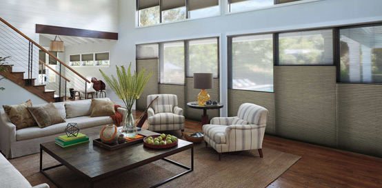 Buy Hunter Douglas Vinette® Modern Roman Shades in Walnut Creek